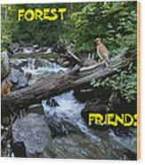 Forest Friends Sharing A Log Over A Creek On Mt Spokane Wood Print
