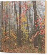 Forest In Late Autumn Wood Print
