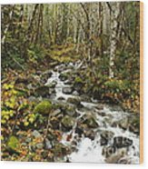 Forest Overflows Wood Print