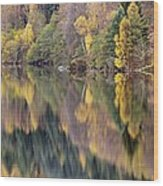 Forest Reflected In A Loch Wood Print