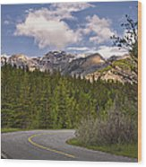 Forest Road In Kananaskis Country Wood Print by Tatiana Boyle
