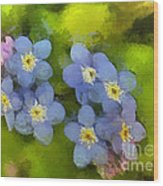 Forget-me-not Flower Wood Print