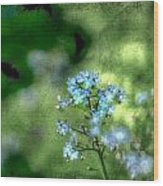 Forget-me-not Grunge Wood Print