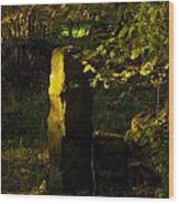 Forgotten Gatepost Wood Print