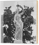 Forsyth Fountain - Black And White 2 Wood Print