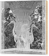 Forsyth Fountain - Black And White 4 Wood Print