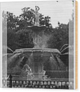 Forsyth Park Fountain - Black And White Wood Print