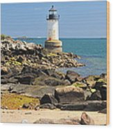 Fort Pickering Lighthouse Wood Print by Catherine Reusch Daley