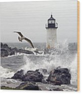 Fort Pickering Lighthouse Salem Ma Wood Print