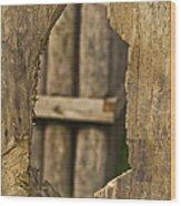 Fort Walls Wood Print