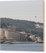 Fortress Canakkale And War Memoriel - Dardanelles Wood Print