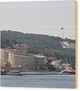 Fortress Canakkale And War Memoriel - Dardanelles Wood Print