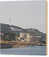 Fortress Canakkale - Dardanelles Wood Print