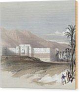 Fortress Of Akabah Arabia Petra 1839 Wood Print