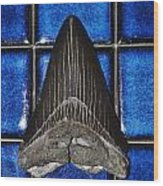 Fossil Megalodon Tooth Wood Print