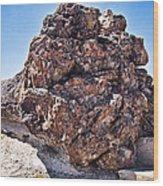 Fossil Tree Wood Print