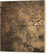 Fossilite Wood Print