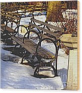 Fountain And Benches In Snow Wood Print
