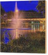 Fountain And Bridge At Night Wood Print