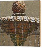 Fountain Art I Wood Print