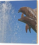 Fountain  Wood Print
