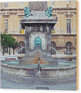 Fountain In Arles France Wood Print