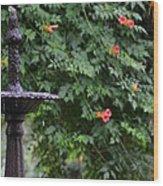 Fountain In The Garden Wood Print