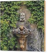 Fountain In The Walled Garden, Florence Wood Print