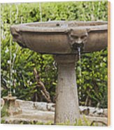 Fountain With Faces Wood Print
