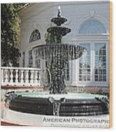 Fountains Of Love Wood Print