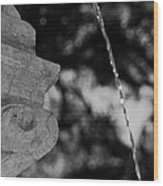Fountain's Stream Wood Print