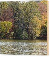 Fowler Lake 4 Wood Print by Franklin Conour