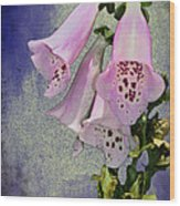 Fox Glove Blue Grunge Wood Print by Bill Cannon