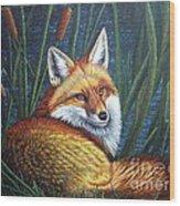 Fox In Cat Tails Wood Print by Terri Maddin-Miller