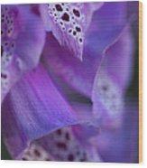 Foxglove Detail Wood Print