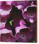 Foxglove Macro Wood Print