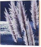 Foxtails At The Lake Wood Print