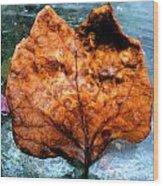 Foxy Leaf Wood Print
