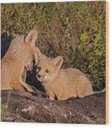Foxy Talk Wood Print