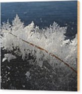 Fractal Frosty Ice Crystals Wood Print