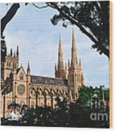 Framed Cathedral Wood Print