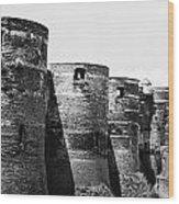 France: Chateau Dangers Wood Print