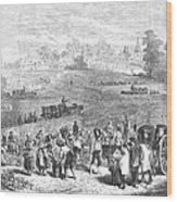 France: Wine Harvest, 1871 Wood Print