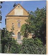 Franconian Village Church Wood Print
