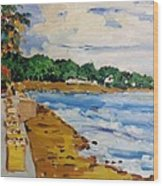 Frederiksted By The Pier Wood Print