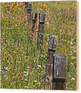 Fredricks Meadow Wood Print