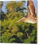 Free Flight Wood Print