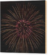 Freedom Flower Wood Print
