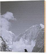 Freedom In The Himalayas In Nepal Wood Print