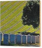 Freedom's Sacrafice Wood Print
